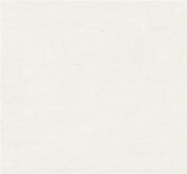 wallquest-pelikan-prints-radiant-raked-loops-tn50600