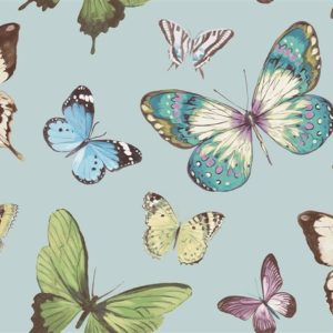 wallquest-jaima-brown-home-chelsea-lane-butterfly-jb60302