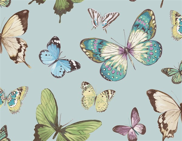 wallquest-jaima-brown-home-chelsea-lane-butterfly-jb60302