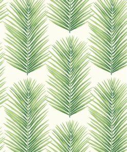 wallquest-jaima-brown-home-chelsea-lane-palmera-fern-jb60004